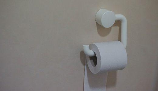 【ベストなタイミングは?】トイレ掃除は毎日サッとやるとラクですよ!