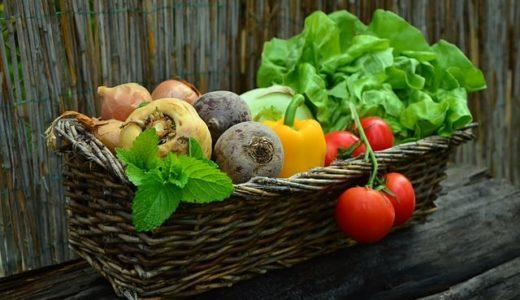 料理が苦手だからこそ「旬の野菜を食べる」ことで節約することにした